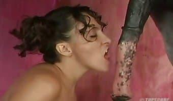 delectable slut fucks with stallion
