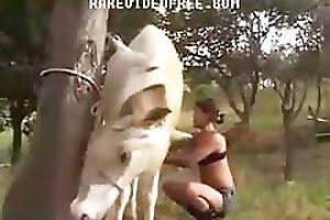 zoo-fuck horse-sex