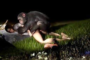 monkey bestiality-porn