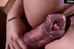 Zoo Sex